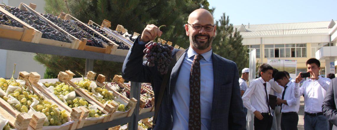 США оказывают поддержку в проведении конкурса на лучший виноград в Узбекистане